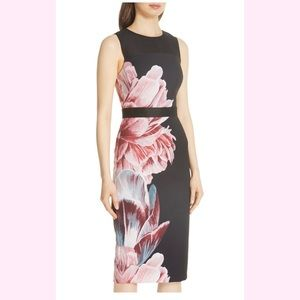 Ted Baker London Xanadu Dress Sz. 1 (US 4)